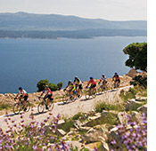 Dalmatian Coast biking photo